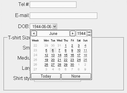 Figure 7-3. Display for an input of type datetime