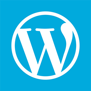 WordPress 函数参考中文文档