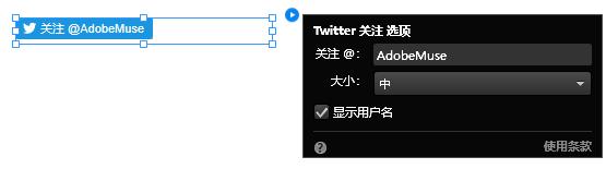 """配置""""Twitter 关注""""构件"""