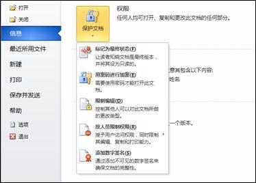带有选项的「保护文档」按钮