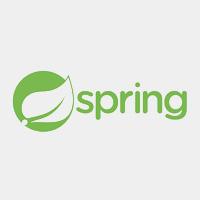 Spring 手撸专栏
