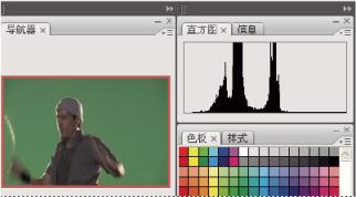 Animate 工作流程和工作区