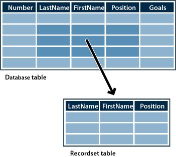 什么是 Web 应用程序和动态网页