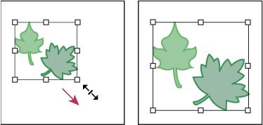 如何在 Illustrator 中变换对象