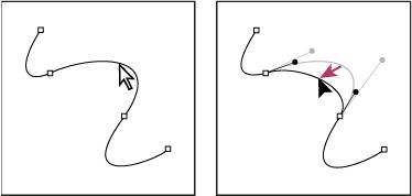 如何在 Illustrator 中调整路径段