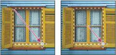 在 Photoshop 中使用选框工具进行选择