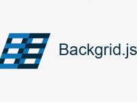 Backgrid.js 基于 Backbone.js 用于构建语义表格组件