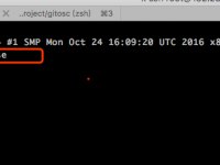 实战开发一个 Nginx 扩展(Nginx Module)